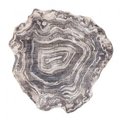Carpet TINE 75426B Tree wood - modern, irregular shape cream / grey