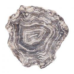 Moderní koberec TINE 75426B Pařez stromu, nepravidelný tvar, krémovo šedý