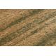 Dywan ROYAL wzór GR010 Ramka, beż / zielony