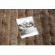 Moderní koberec FLIM 007-B3 shaggy, Pruhy - Strukturální hnědý