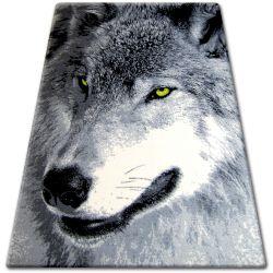 Bcf flash szőnyeg 33303/150