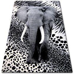 Carpet BCF FLASH 33293/170