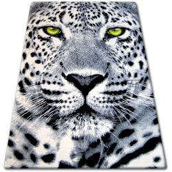 Carpet BCF FLASH 33308/150